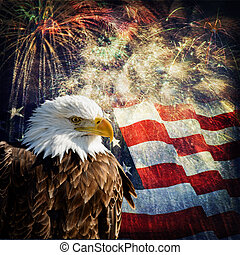 Bald Eagle & Fireworks - Composite photo of a Bald Eagle...