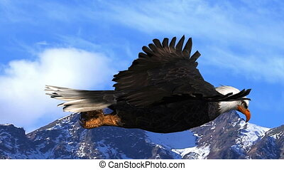 Bald Eagle Flies Against the Background of Mountains and Sky...