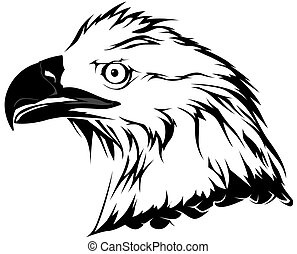 Bald Eagle Head - Black Illustration, Vector