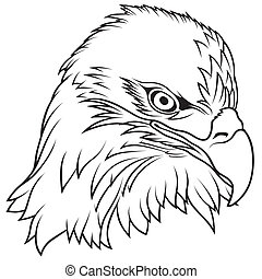 Bald Eagle Head - Black Outline Illustration, Vector