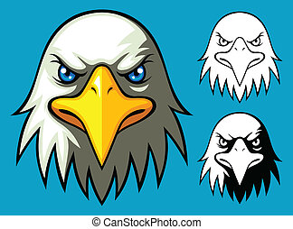 Bald Eagle Head - Eagle head from front view with crisp...