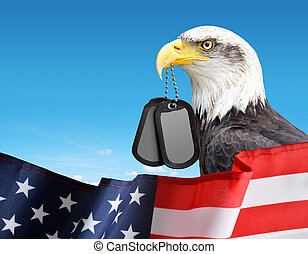 Bald Eagle holds a dog tags in his beak. In the foreground a American Flag.