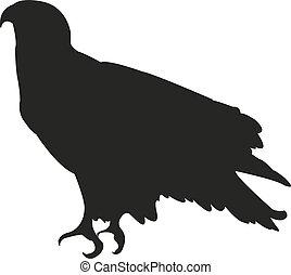 Bald Eagle silhouette sitting. Vector illustration EPS10