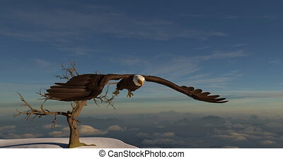 Bald Eagle sitting atop of a dead tree takes off and flies 3d animation 4K