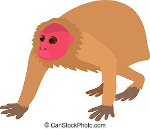 Bald wakari icon, cartoon style