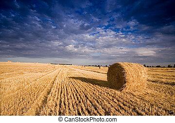 Bale in Landscape - landscape