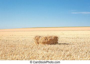 Bale of straw 1