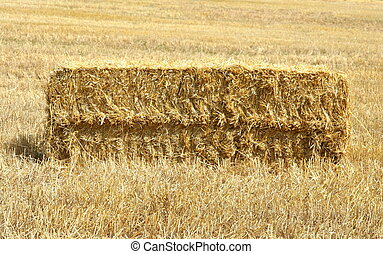 Bale of straw on field
