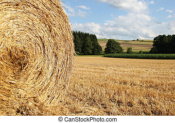 bale of straw