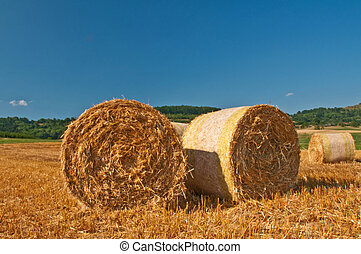 bale of straw with a blue sky