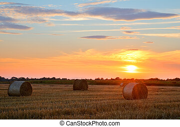 bale - straw bale on field on sunset time