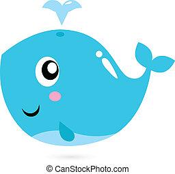 baleia azul, branca, isolado, caricatura