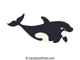 baleine, mignon, tueur, childrens, rigolote, blanc, isolé, plat, main, sourire., livre, vecteur, illustration, fond, dessiné, orca., eps, style., dessin animé, 10