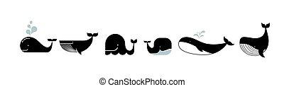 baleines, dauphins, vie, mer, icônes