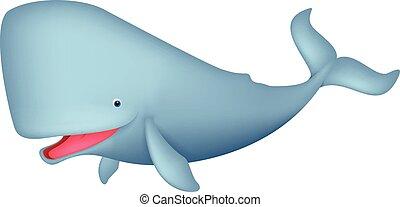 balena, cartone animato, carino