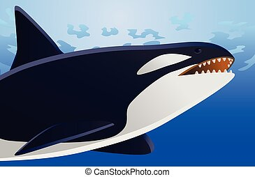 balena, vettore, orca, mare, sotto
