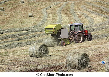 Baler Releases a Hay Bale - A baler releases a round hay...
