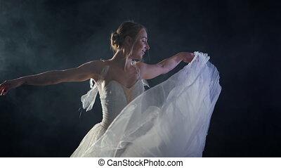 balerina, balet, dookoła, stage., taniec, purpurowy, lekki, dym, tutu, ciemny, pointe, tancerz, czarne tło, łania, mgła, wiry, dziewczyna, biały