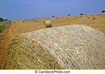 Bales - Close up of hay bale in a big field