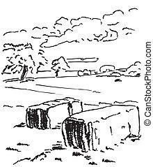 bales., frumento, fieno, farm., campo, paesaggio rurale