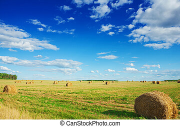 bales of a straw on field