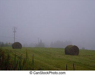 Bales of hay in a fog