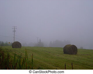 Bales of hay in a fog