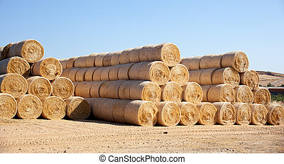 Bales of hay on a field after harvest