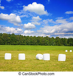 bales of hay on field