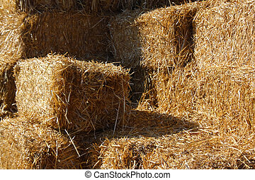 Bales of Hay - Stacked bales if hay on the farm.
