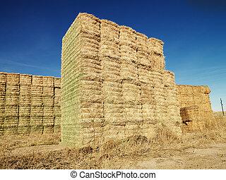 Bales of hay. - Bales of hay in rural setting.