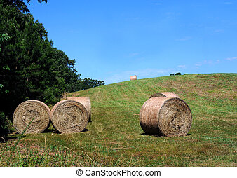 Bales Ready for Storage - Hay bales are ready for storage on...
