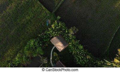 BALI, INDONESIA - SEPTEMBER 30, 2018: 4K aerial view of...