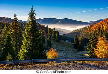 Balileasa valley of Apuseni mountains. gorgeous autumn...