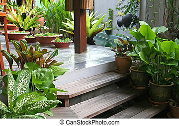 Balinese decor plants - Pot with floating plants in Balinese...
