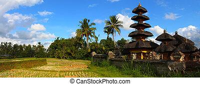 balinese, paesaggio, con, tradizionale, tempio, indonesia