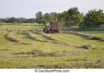 Baling fresh cut hay and straw