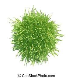 Ball green grass