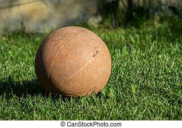 ball in my garden