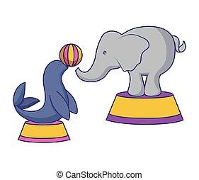 balle, éléphant cirque, cachet