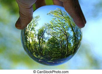 balle, capturé, forêt cristal, vert, lentille, par