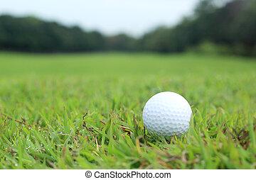 balle golf, chenal, mensonge