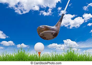 balle golf, et, chauffeur, sur, herbe verte