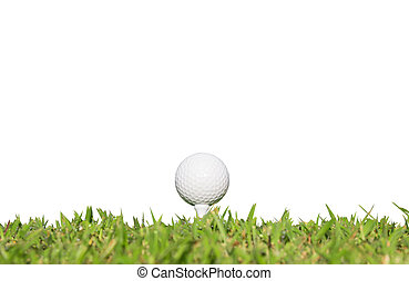 balle golf, herbe, blanc, isolé, fond
