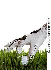 balle, golf, récupération