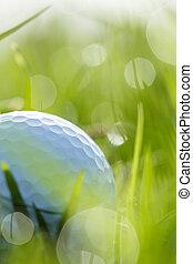 balle, haut, herbe, bokeh, fin, golf