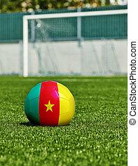 balle, herbe, drapeau, stade, football, camerounais