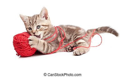 balle, tabby, clew, jouer, chaton, ou, rouges