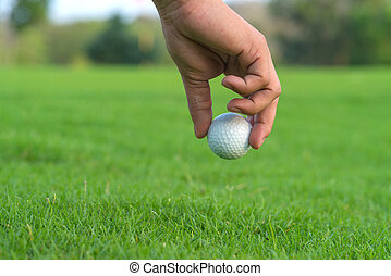 balle, tribunal, chenal, haut, main, golf, cueillette