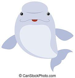ballena, beluga, fondo blanco